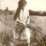 Irish girl pulling flax