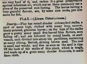 Culpeper herbal entry for flax (linseed) detail 1
