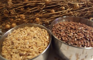 Whole linseeds should be ground for treating osteoporosis to get the best from both omega-3 and lignans to keep ladies bones strong