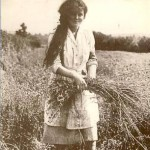 Irish girl pulling flax
